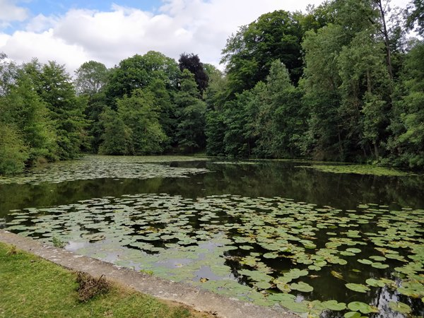 Current Waters | Kingfisher Angling and Preservation Society